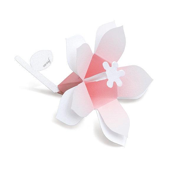 花言葉 ブーケ Hana-kotoba Bouquet (pearl pink) 10枚入