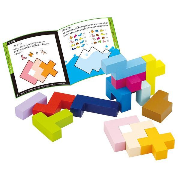 知の贈り物シリーズ 立体パズル