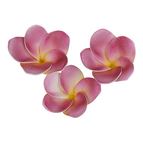 フラワーマグネット プルメリア ピンク